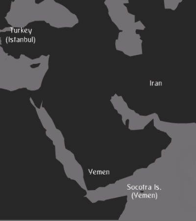 گزارش تصویری از جزیره شگفتی ها در یمن جنگ زده